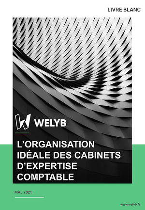 Livre Blanc - Lorganisation idéale des cabinets dexpertise-comptable.pptx